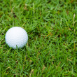 Golf ball on the green grass — Stock Photo #29717415