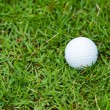 Golf ball on the green grass — Stock fotografie