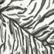 Fabric skin white tiger — Stock Photo