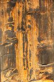 Textura de madeira marrom — Foto Stock