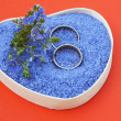 Married, Wedding rings, in small blue stone — Stock Photo