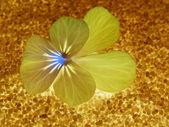 Enda blossom färgglada, moderna, abstrakta som i scenen — Stockfoto
