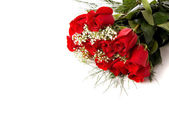 Boquet or red roses on white — Stock Photo