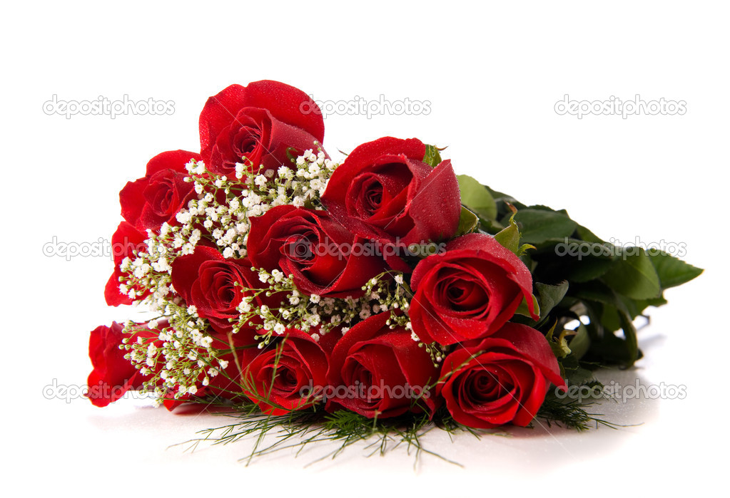 A boquet or red roses on a white background with copy space — Stock Photo #13406249