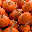 Stock Photo: Piles of pumpkins background