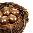 Gold eggs in a nest on a white background - Stock Photo