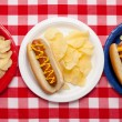 Several hotdogs on colored plates — Stock Photo