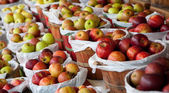Baskets of apples at a fruit stand — Stock Photo