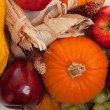 Assorted fall vegetables as a background — Stock Photo