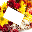 Stock Photo: Autumn floral arrangement on white with note back