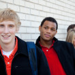 Stock Photo: Multi-racial college students against brick wall