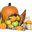 Stock Photo: Harvest Cornucopia