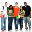 Royalty-Free Stock Photo: Multicultural College Students