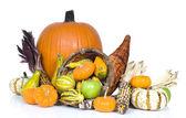 Harvest Cornucopia — Stock Photo