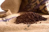 Κόκκοι καφέ — Φωτογραφία Αρχείου