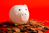 Piggy Bank on Red — Stock Photo
