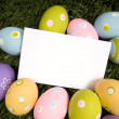 Easter Egg Notecard — Stock Photo #13630047