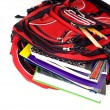 Red School Backpack — Stock Photo #13632287