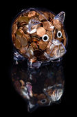 Clear Piggy Bank full of American Pennies — Stock Photo