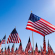 American Flag Display for Holiday — Stock Photo #13642197