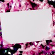 Stock Photo: Blank Curly Ribbon Notecard