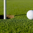 Golf Ball Near Hole — Stock Photo #13643282