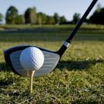 Golf topu ve kulüp — Stok fotoğraf