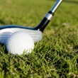 Golf Club and Ball on Fairway — Stock Photo