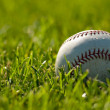 Baseball on Grass - 图库照片