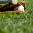 Baseball Glove, Bat and Ball - Stock Photo