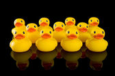 Yellow Rubber Ducks in Rows — Stock Photo