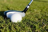 Golf Club and Ball on Fairway — Foto Stock