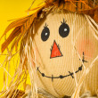 Scarecrow — Stock Photo