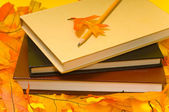 School books and Autumn — Foto de Stock
