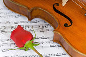 Violine, rose & noten — Stockfoto