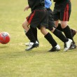 Stock Photo: Children playing soccer - football