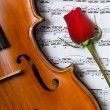 Violin, rose and sheet music — Stock Photo #13931548