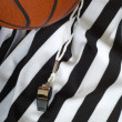 Basketball Referee — Stock Photo #13932528
