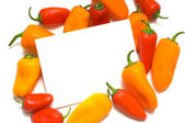 Pepper Notecard — Stock Photo