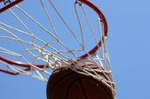 篮球经历网 — 图库照片
