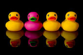 Dare to be different - rubber ducks on black — Stockfoto