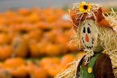 Autumn Decoration — ストック写真