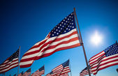 A dispaly of American flags with a sky background — Stock Photo