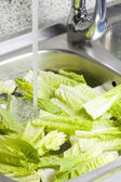 Hygiene of lettuce — Stock Photo