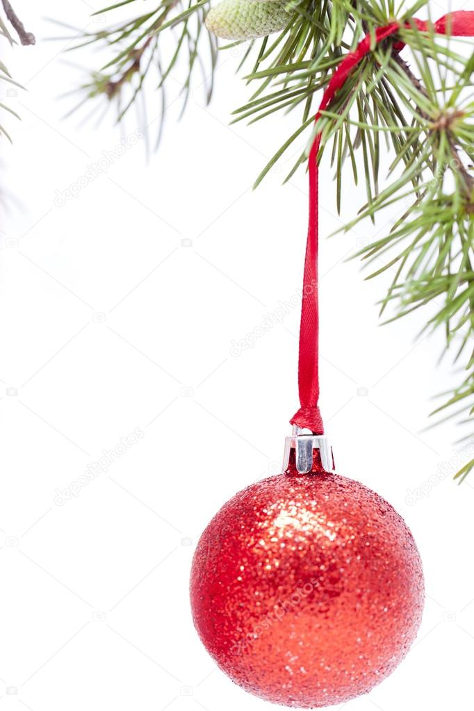 Christmas decorations hanging from the branch of a fir — Stock Photo #14249865