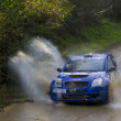 Catalonia Rally Championship ground -  