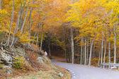 Montseny in autumn — Stock Photo