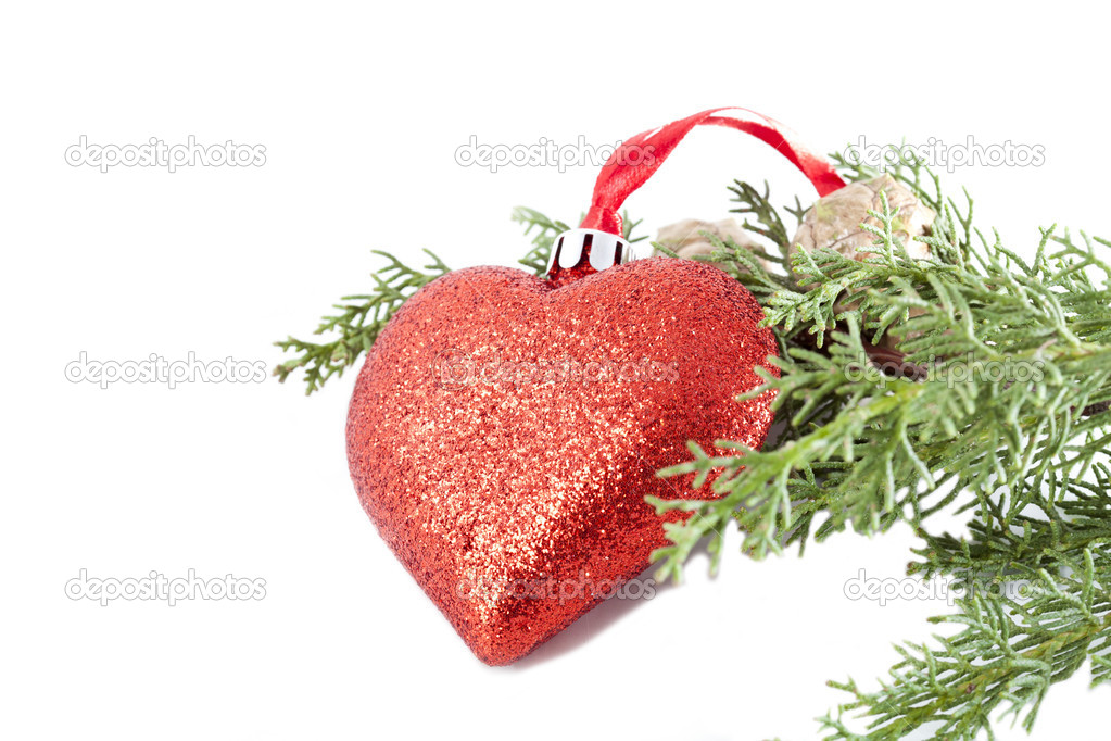 Christmas decorations hanging from the branch of a fir — Stockfoto #15232083