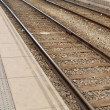 Train rails — Stock Photo #30339209