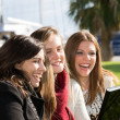 Young female students — Stock Photo